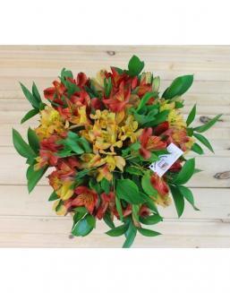 Цветы купить в усть-каменогорске купить цветы комнатные в оренбурге