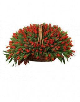 Basket 501 red tulips | 501 flowers flowers