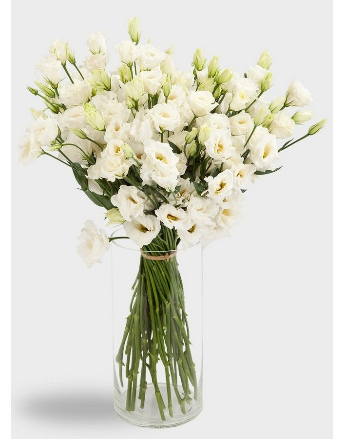 Цветов, цветок эустома купить букет